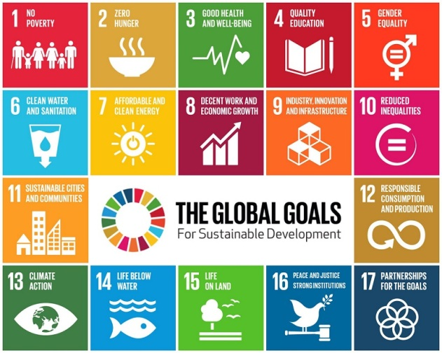 In-body Islam and Sustainable Development Goals